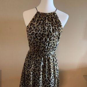 Handkerchief Hem Leopard Print Dress NWT